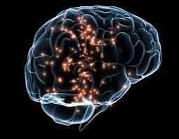 activare a creierului la concurenta