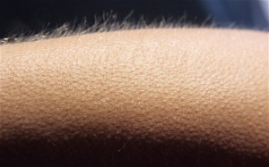 piele de gaina de la muzica